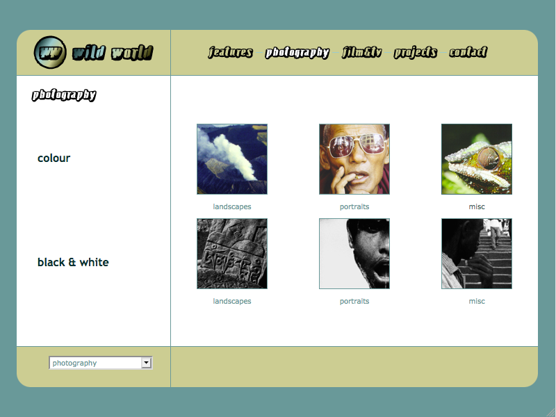 Wild World web site gallery page