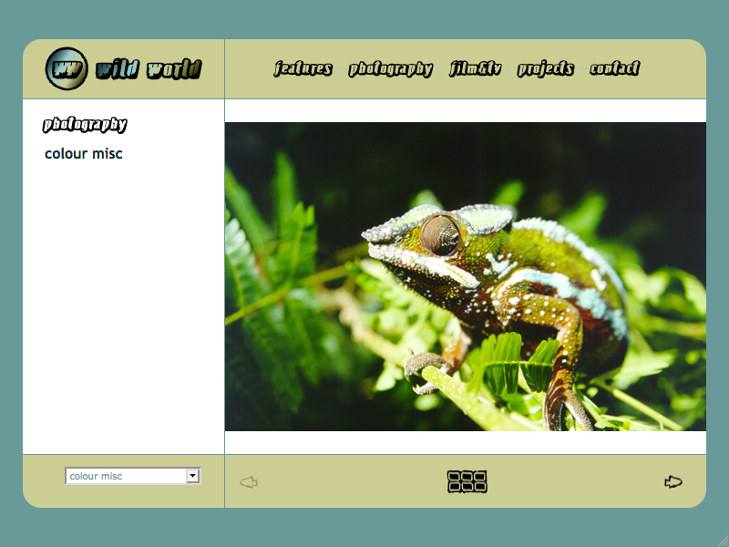 Wild World web site image page